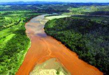 Movimento Todos pelo Rio Doce organiza força-tarefa com mil voluntários, dia 5 de junho, para proteger mil nascentes do rio