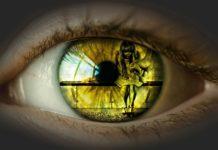 """""""Violência contra a mulher, não desvie o olhar"""". Imagem - Alexas_Fotos/Pixabay"""